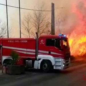 """022810769 4c1bbace b5a3 4743 ac95 ffdb28e012e7 - Roghi in Sicilia, Curcio a Musumeci: """"L'intervento sugli incendi responsabilità della Regione"""""""