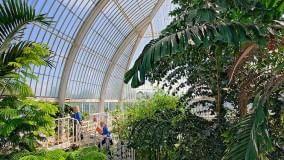 E fate un Orto botanico nel Ponte a Nord