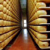 Capitale gastronomia: le gustose ragioni di Parma