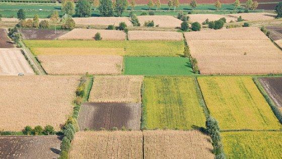 Regione Emilia Romagna, 400 domande per tornare sui campi