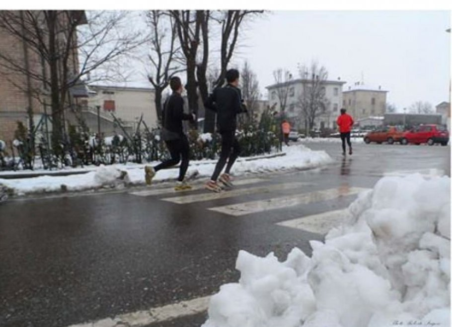 Parma, torna la Maratona Salso-Busseto