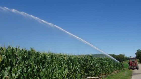 Parma ancora 7 giorni senza piogge colture tipiche a for Sistema irrigazione