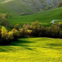 Rural Festival, torna la festa della biodiversità agricola