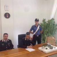Parma, piantagione di marijuana nel giardino del condominio