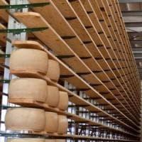 Sisma: parmigiano e Chianti salvi con nuove scalere d'acciaio