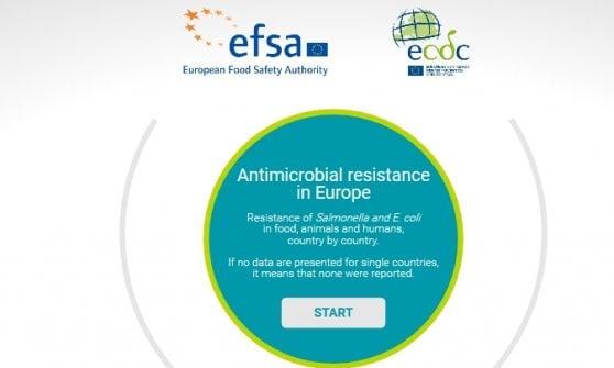 Resistenza dei batteri agli antibiotici, l'allarme dell'Efsa