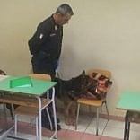 """Cani antidroga nelle scuole I presidi: """"Siamo favorevoli"""""""