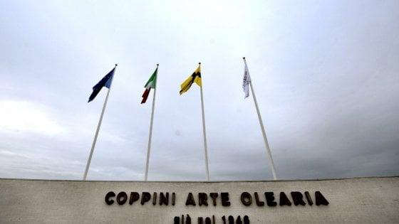 Economia, Coppini Olearia si amplia e fa baricentro su Parma