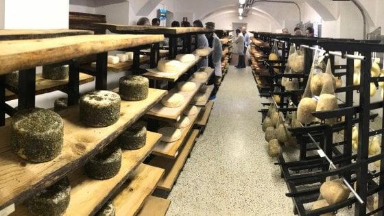 Fidenza, i formaggi di qualità stagionano nel Collegio dei Gesuiti