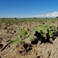 Siccità: gli interventi della Regione a Parma