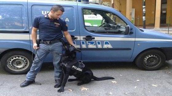 Parma, cani antidroga nelle strade dello spaccio