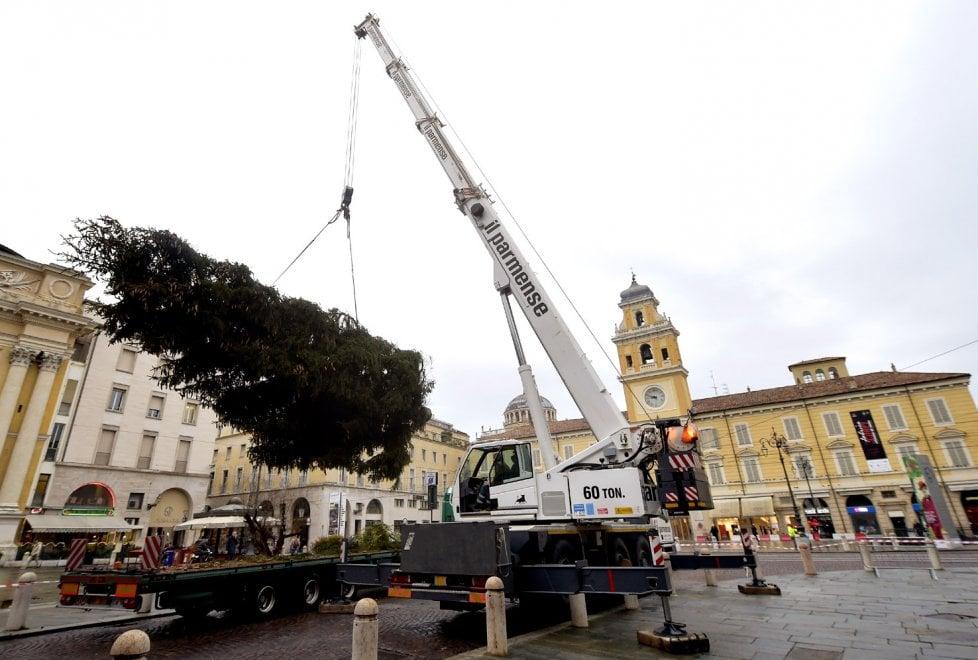 Natale, da Asiago a Parma: l'albero è arrivato in piazza - Foto