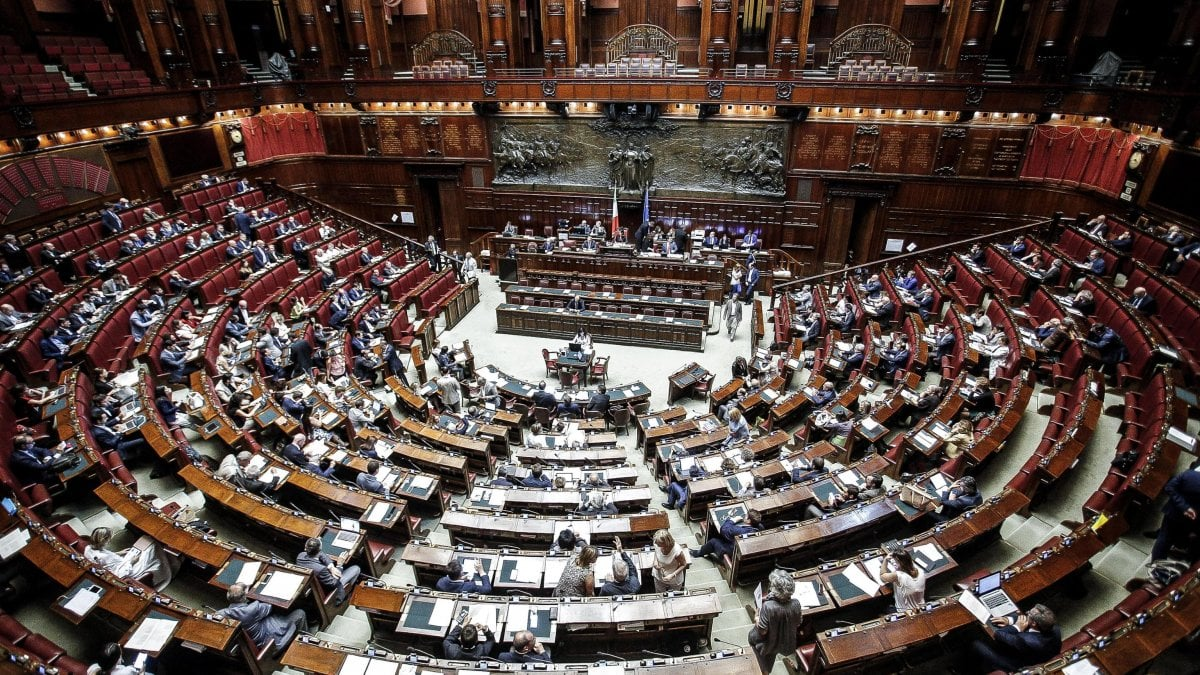 Elezioni nel collegio di parma alla camera pd in testa for Immagini parlamento italiano