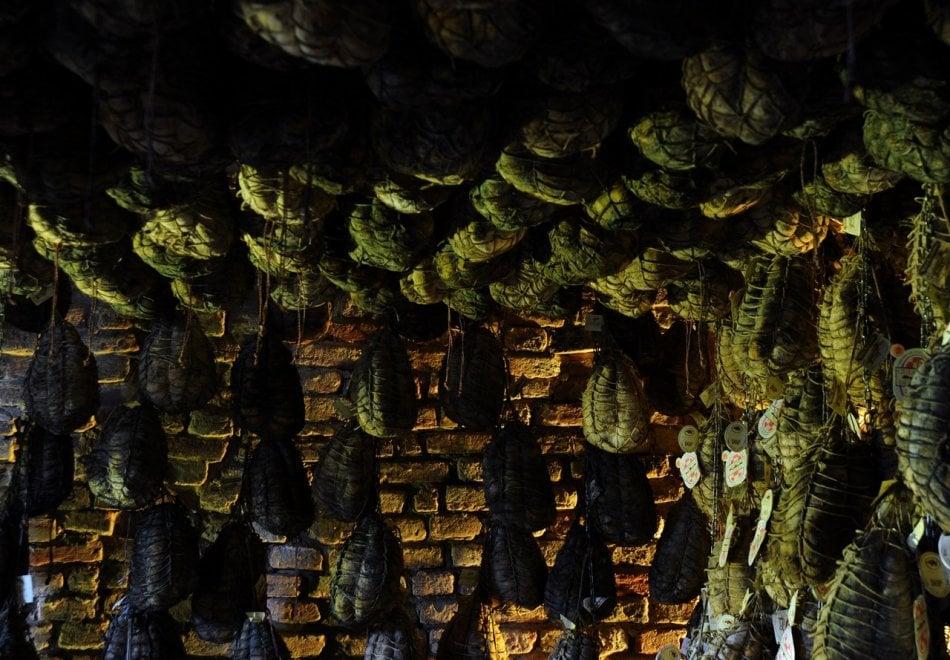 Culatello, un pezzo da museo: nella Bassa parmense omaggio al re dei salumi