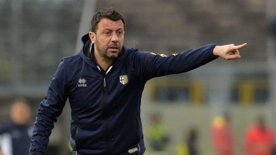"""Parma-Perugia, D'Aversa: """"Voglio giocatori che lottano"""""""