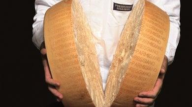 Stagionato, Halal, Kosher e di Vacche Rosse Come è cambiato il Parmigiano