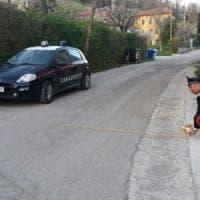 Parma, disturbato dal rumore prende a badilate il giardiniere: arrestato