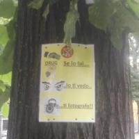 Parma, i cartelli antidroga dei cittadini: