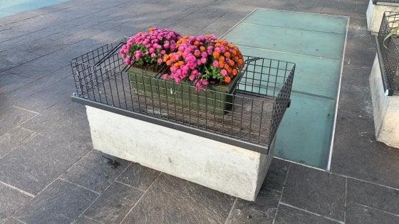 Parma, nelle panchine ingabbiate spuntano i fiori