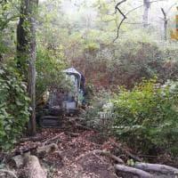 Parma, nel boschetto spuntano tre escavatori rubati -  Foto