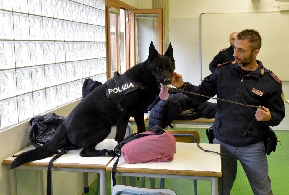 Parma, a scuola arrivano i cani antidroga - Foto