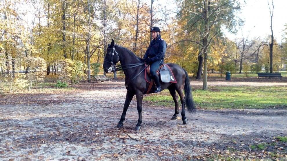 Parco Ducale, carabinieri a cavallo e unità cinofile contro lo spaccio - Foto