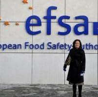 Parma, ex direttrice Efsa candidata Ue alla direzione della Fao
