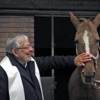 Canile e veterinaria: a Parma la benedizione degli animali - Foto