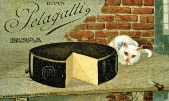 Parmigiano, parole in forma: storia letteraria del re dei formaggi