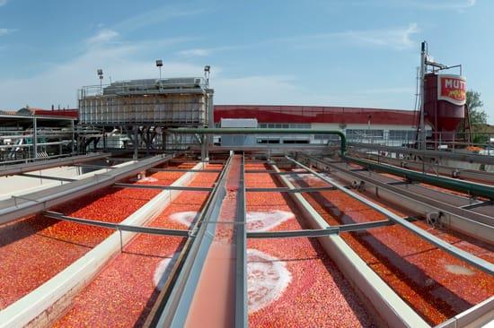 Pomodoro, Mutti cresce e punta all'export dagli Usa all'Australia