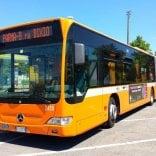Linee, corse notturne  e tariffe: tutte le novità  del trasporto pubblico