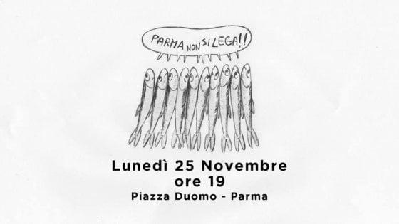 """""""Sardine"""" a Parma, tam tam sulla Rete"""