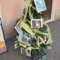 San Leonardo, l'albero di Natale è provocatorio - Foto