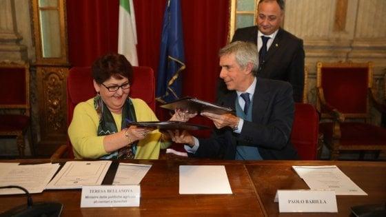 Il Gruppo Barilla acquisterà il 20% in più grano duro italiano