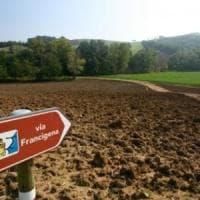 Via Francigena, sbloccati 2,3 milioni per sistemare il tratto emiliano