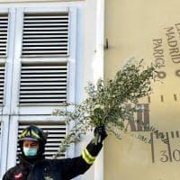 Parma, un gesto di speranza: rose e rami di ulivo a palazzo del Governatore - Foto
