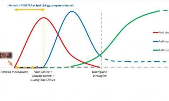 Test rapidi e sierologici Covid-19: dubbi e certezze in vista della fase due