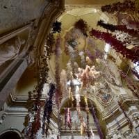 Parma, l'arte rinasce nel segno della natura con Florilegium - Foto