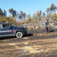 Valtaro, arrestato piromane: incendiava i boschi dei parenti