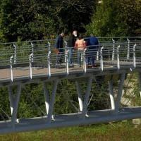 Ponte della Navetta: tecnici al lavoro - Foto