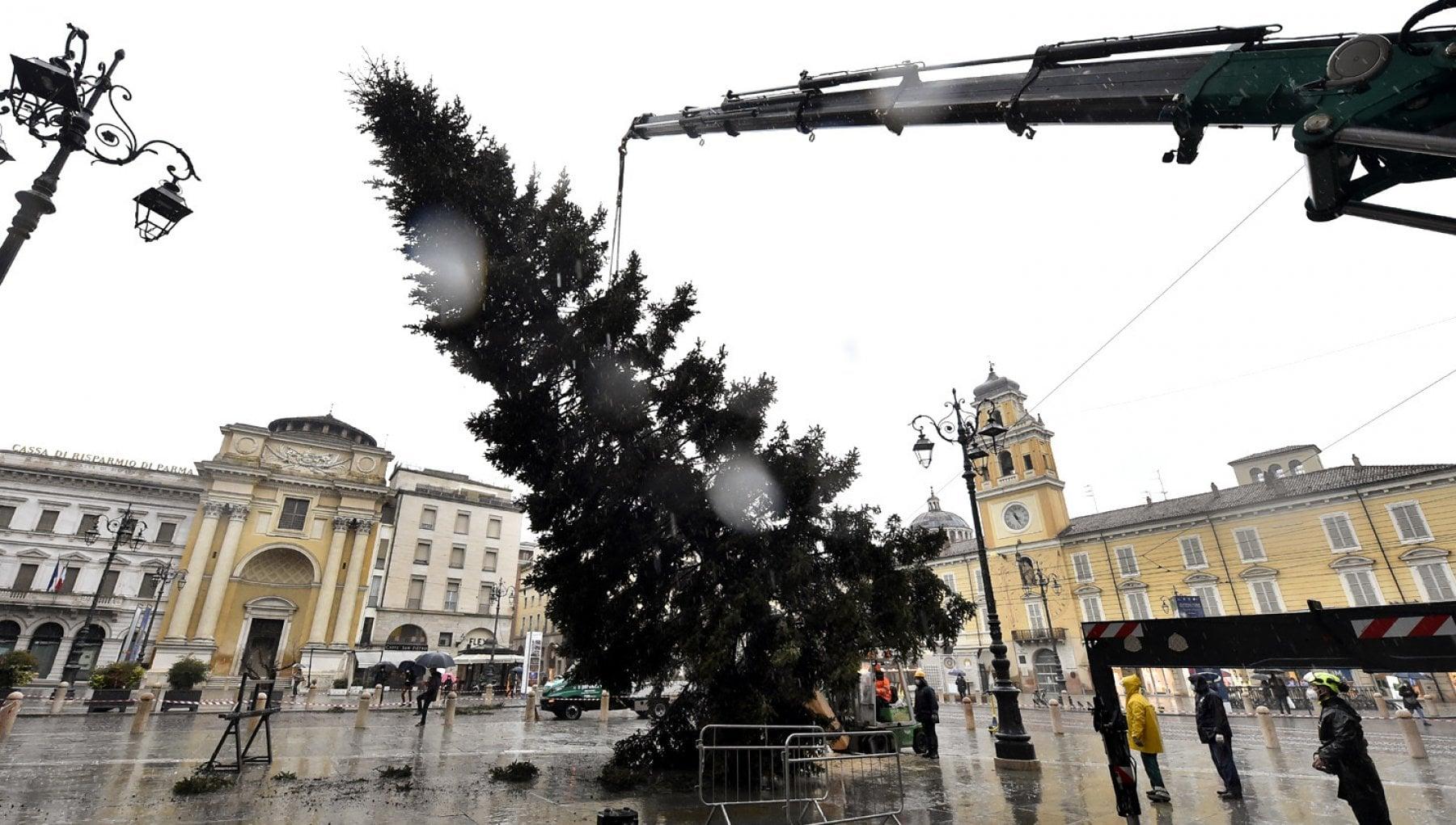 Parma, l'albero di Natale è arrivato in piazza - la Repubblica