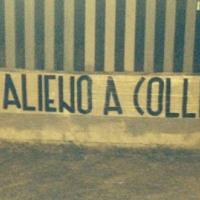 "Casapound, striscioni contro Marino: ""Un alieno a Colli Aniene"""