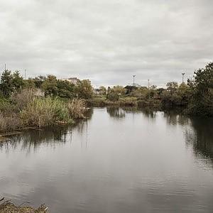 Ex Snia, quell'unico lago naturale della Capitale che rischia di scomparire
