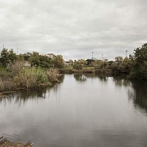 Ex Snia, la vittoria dei cittadini: salvo l'unico lago naturale di Roma