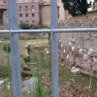Si allaga il Mausoleo di Augusto, nel giorno del via alla festa per il Bimillenario