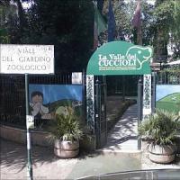 """La Valle dei cuccioli a Villa Borghese a rischio. I volontari: """"Il"""