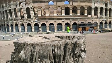 Riforma Mibact, autonomia al Colosseo  e via pedonale tra Fiumicino e porto Traiano