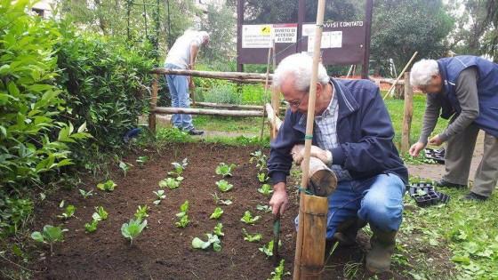 Rastrelli piante e panchine cos i residenti giardinieri for Giardinieri genova