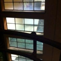 Luci accese di notte in Facoltà, alla Sapienza è allarme sprechi