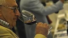 Vino, olio e gusto le eccellenze del Lazio